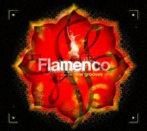 Flamenco New Grooves (2005)